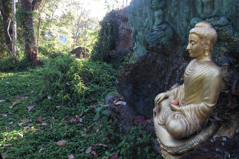 a Buddha image in the forest