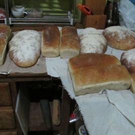 bread march 15